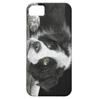 "Border Collie Pup - ""Tell Me More About 'Sheep'"" iPhone 5 Case"