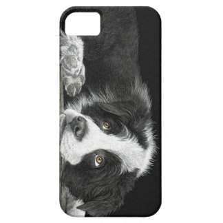 "Border Collie Pup - ""Tell Me More About 'Sheep'"" iPhone 5 Covers"