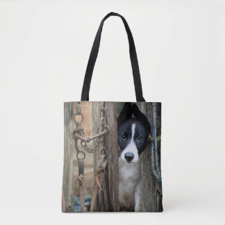 Border Collie puppy at the gate tote