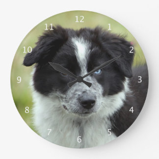 Border collie puppy dog cute beautiful photo large clock