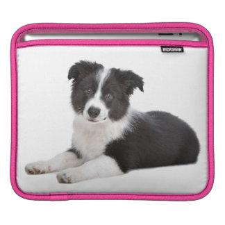 Border Collie Puppy Dog iPad Laptop Sleeve iPad Sleeve