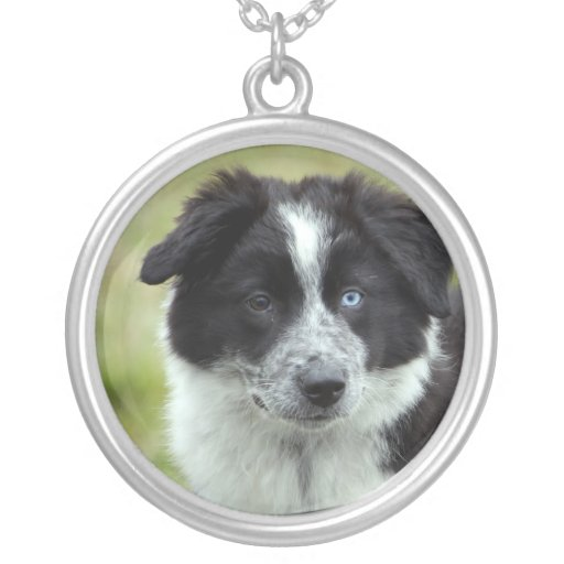 Border Collie puppy dog necklace, gift idea