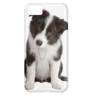 Border Collie Puppy iPhone 5C Case
