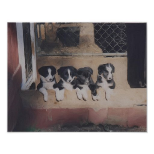 Border Collie Puppy Litter Oil Painting Print