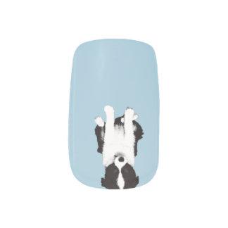 Border Collie Puppy Minx Nail Art
