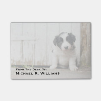 Border Collie Puppy Post-it Notes
