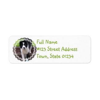 Border Collie Puppy Return Address Label