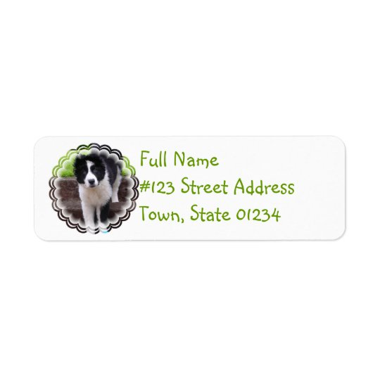 Border Collie Puppy Return Address Label