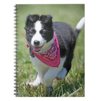 Border Collie Puppy running Spiral Notebook