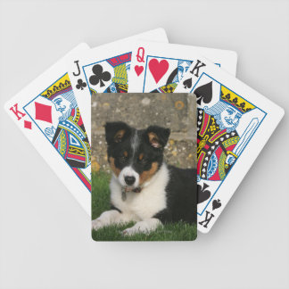 Border Collie Puppy with Leaf in Mouth Bicycle Playing Cards