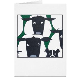 Border Collie & Sheep Blank Card