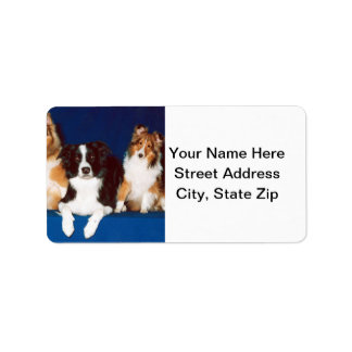 Border Collie & Shelties Address Label