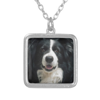 border-collie silver plated necklace