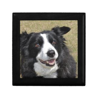 Border Collie Small Square Gift Box
