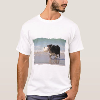 Border Collie - Soccer Anyone? T-Shirt