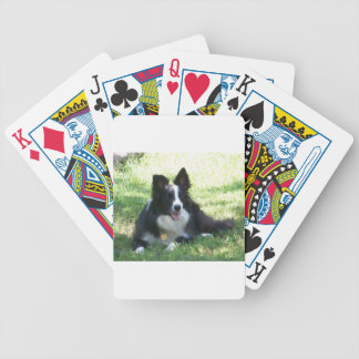 Border Collie Tshirts Bicycle Playing Cards
