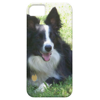 Border Collie Tshirts iPhone 5 Case