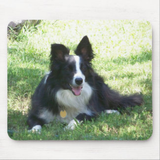 Border Collie Tshirts Mouse Pad