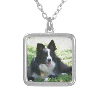 Border Collie Tshirts Silver Plated Necklace