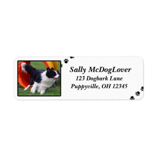 Border Collie Tunnel Agility Return Address Label