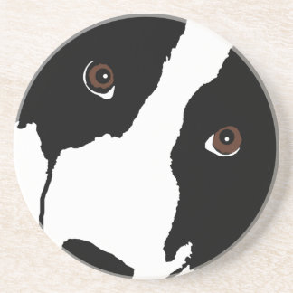BORDER COLLIE WATCHING EWE COASTER