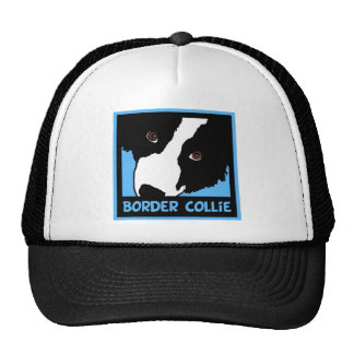 border collie watching you ewe cap