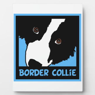 border collie watching you ewe plaque