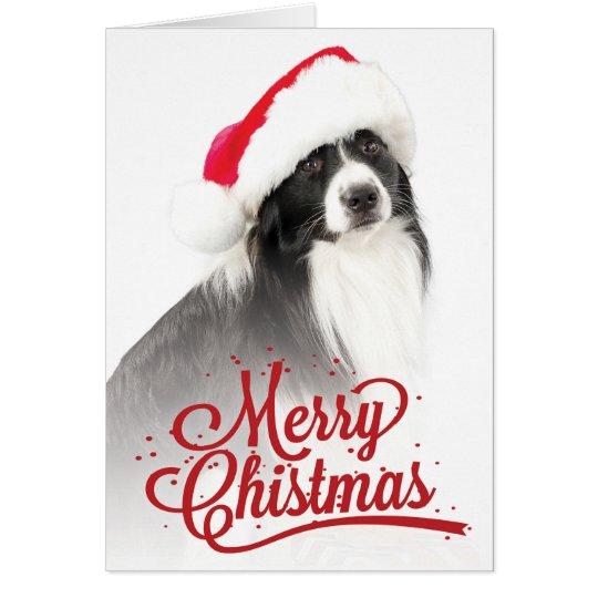 Border Collie Wearing Santa Hat Christmas Greeting Card