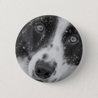 Border Collie's First Snow 6 Cm Round Badge