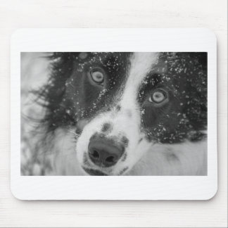 Border Collie's First Snow Mouse Pad