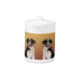 Border Collies on Asian Design Chinese New Year