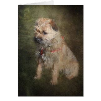 Border Terrier Greetings Card