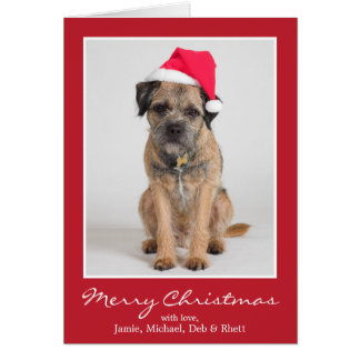 Border Terrier Wearing A Santa Hat Card