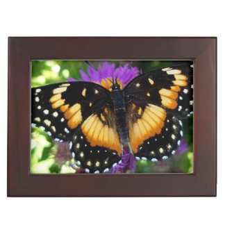 Bordered Patch Butterfly on Purple Aster Keepsake Box