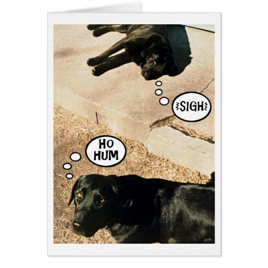 Bored doggies - We Miss You Card