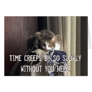 Bored Kitty Miss you Greeting Card
