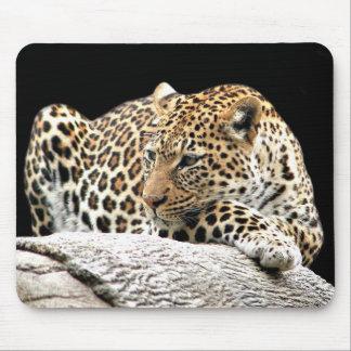 Bored leopard mousepad