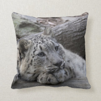 Bored Snow Leopard Cub Cushion