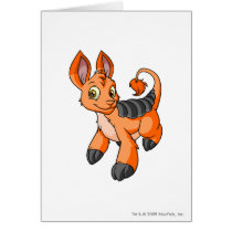 Bori Orange cards
