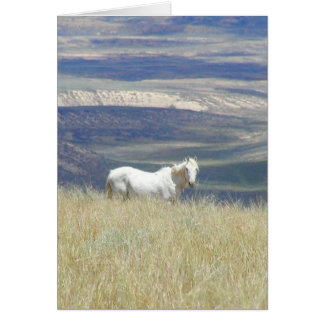 Born Free Wild Mustang Horse Greeting Card