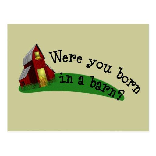Born in a Barn Quote Recipe Card Postcards