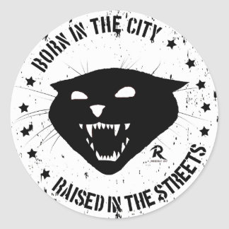 Born in the city, raised in the streets. Stray Cat Classic Round Sticker