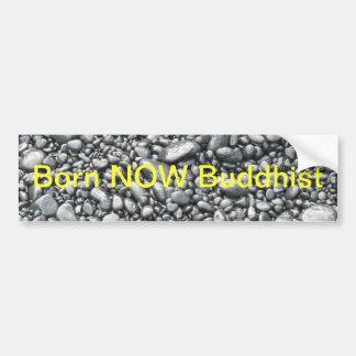 Born NOW Bumper sticker