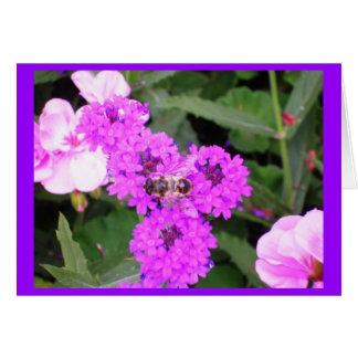 Born to bee wild.... greeting card