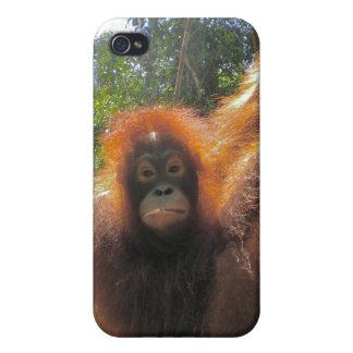Born Wild Movie Star iPhone 4/4S Case