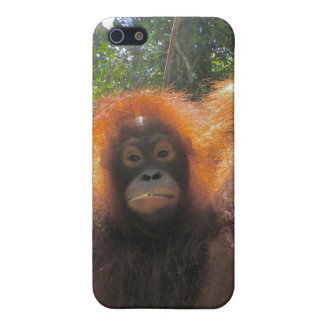 Born Wild Movie Star iPhone 5/5S Cover