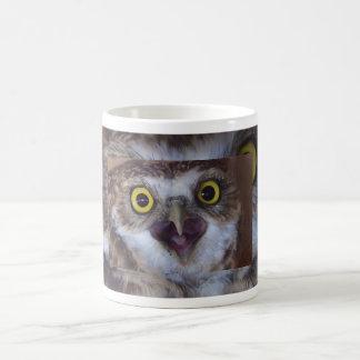 borrowing-owl-4-jpg, borrowing-owl-2, borrowing... basic white mug