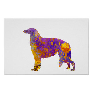Borzoi in watercolor poster