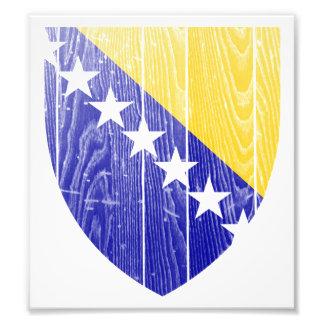 Bosnia And Herzegovina Coat Of Arms Art Photo