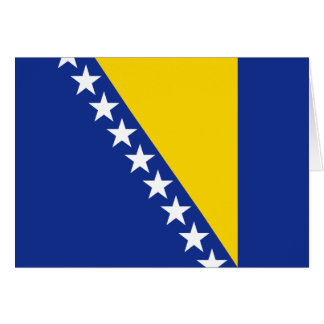 Bosnia Herzegovina Flag Notecard